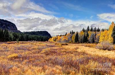 Grand Mesa Colors Art Print by Bob Hislop