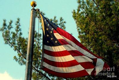 Photograph - Grand Old Flag by Tami Quigley