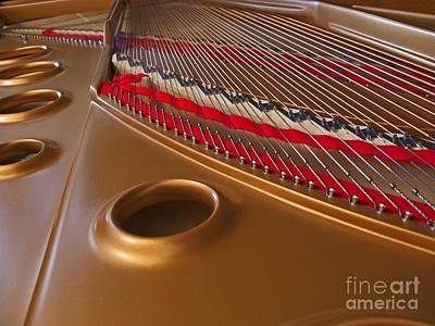 Piano Photograph - Grand Piano by Ann Horn