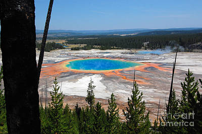 Grand Prismatic Spring From Hillside Art Print by Debra Thompson