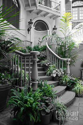Photograph - Grand Staircase by Tracey McQuain