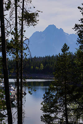 Photograph - Grand Teton Framed By Cedars by Jennifer White
