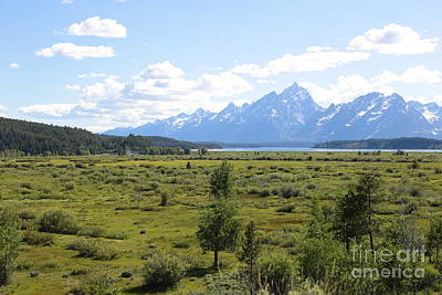 Photograph - Grand Teton Landscape by Carol Groenen