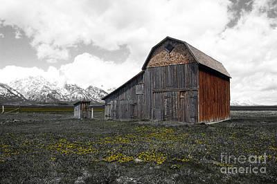 Grand Teton National Park Barn On Mormon Row Color Splash Art Print by Shawn O'Brien