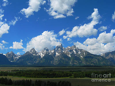 Art Print featuring the photograph Grand Teton National Park by Janice Westerberg