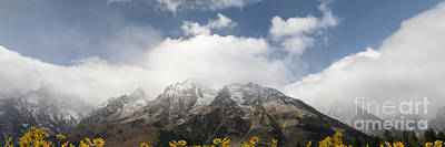Grand Teton National Park Art Print by Wildlife Fine Art