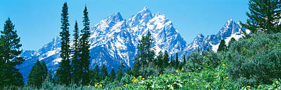 Magnificent Mountain Image Photograph - Grand Teton National Park Wy Usa by Panoramic Images