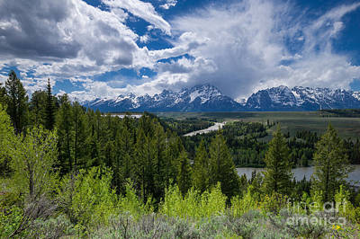 Grand Teton Np Art Print