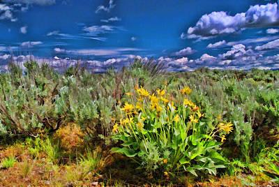 Photograph - Grand Tetons Wildflower by Allen Beatty