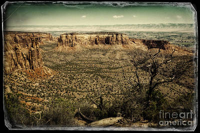 Photograph - Grand View by Jon Burch Photography