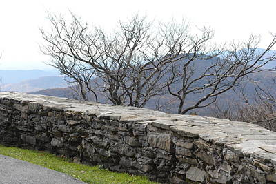 Photograph - Grandfather Mountain Rock Wall by Misty Stach