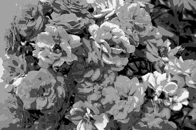 Rose Photograph - Grandma's Roses by Charlotte Schafer