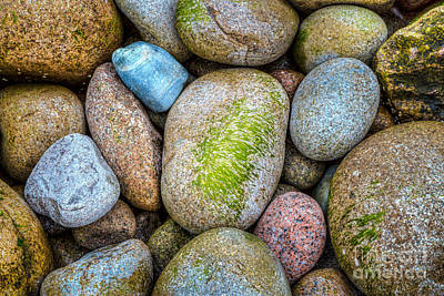 Photograph - Granite Cobbles In Acadia by Susan Cole Kelly