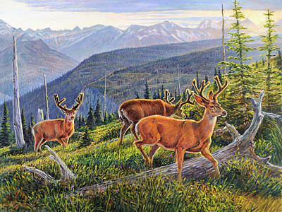 Granite Park Bucks Art Print