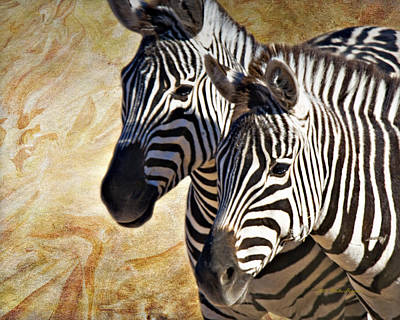 Photograph - Grant's Zebras_b1 by Walter Herrit