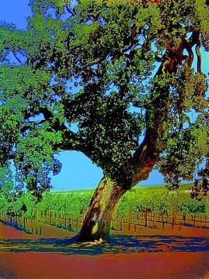 Vineyard Digital Art - Grape Vines Under The Oak Tree by Cindy Edwards