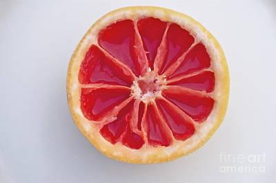 Grapefruit Mandala Art Print