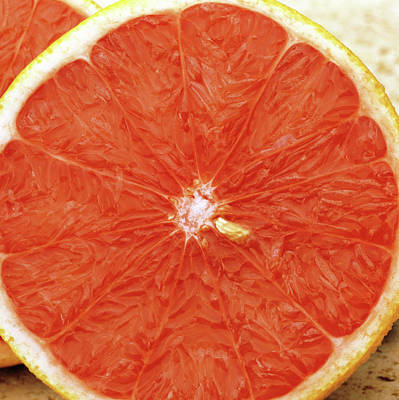 Grapefruit Photograph - Grapefruit Sliced In Two by Steve Percival/science Photo Library
