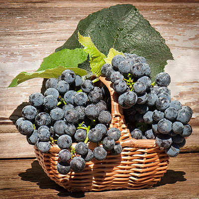 Grapes And Leaves In Basket Art Print by Len Romanick