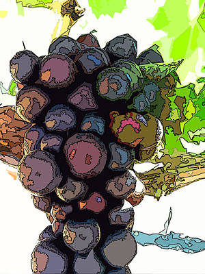 Photograph - Grapes by Bill Owen