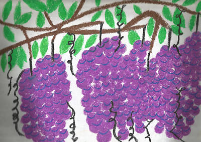 Purple Grapes Drawing - Grapes by Brian George