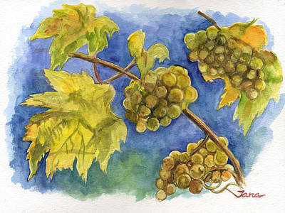 Grapes Art Print by Jana Goode