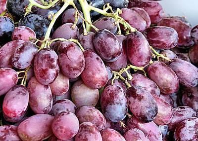 Photograph - Grapes by Janice Drew