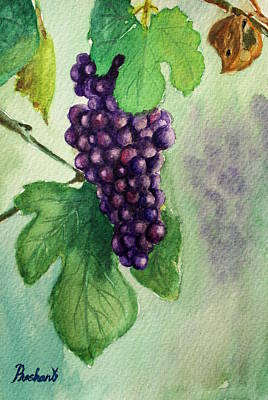 Painting - Grapes On The Vine by Prashant Shah