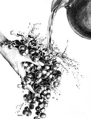 Water Jug Drawing - Grapes by Sandra Paradise