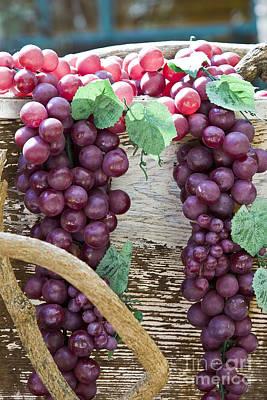 Grapes Art Print by Tim Hightower