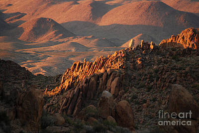 Photograph - Grapevine Hills Big Bend Tx by Cindy McIntyre