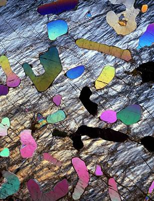 Graphic Granite In Thin Section Art Print by Dirk Wiersma