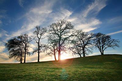 Grapvine Sunset Original by Jeff Klingler