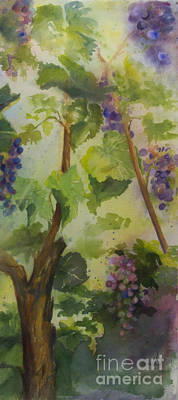 Wine Country Watercolor Painting - Baby Cabernets IIi by Maria Hunt