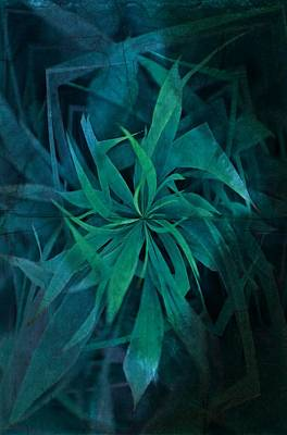 Grass Abstract - Water Art Print by Marianna Mills