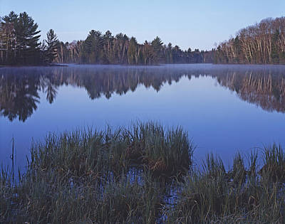 Photograph - Grass Lake Reflection by Tom Daniel