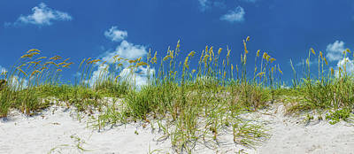 Florida State Wall Art - Photograph - Grass On The Beach, Bill Baggs Cape by Panoramic Images