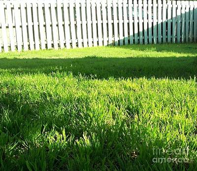 Grass Shadows Art Print