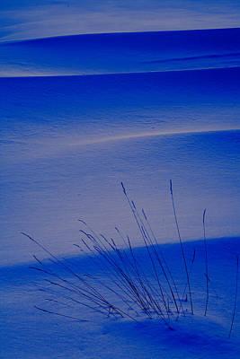 Grasses And Twilight Snow Drifts Print by Irwin Barrett