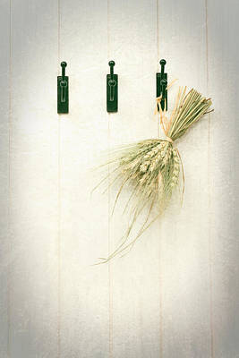 Grasses Art Print by Amanda Elwell