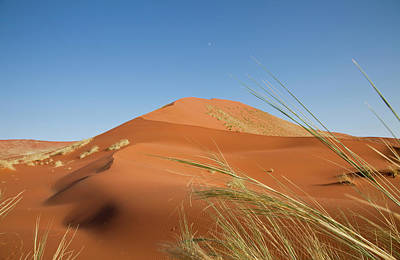 Namib Naukluft National Park Photograph - Grasses, Dune, And Setting Moon, Namib by Jaynes Gallery