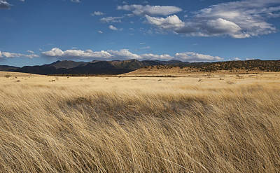 Photograph - Grassland Expanse by Gregory Scott