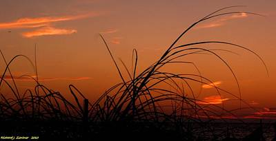 Art Print featuring the photograph Grassy After Glow by Richard Zentner