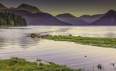 Photograph - Grassy Point--glendale Cove--british Columbia by Tim Bryan