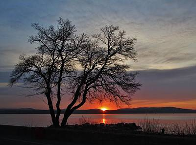 Grassy Point Sunrise Art Print by Thomas  McGuire