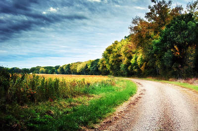 Photograph - Gravel Curve In The Fall by Eric Benjamin