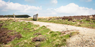 Agricultural Industry Wall Art - Photograph - Gravel Path by Tom Gowanlock