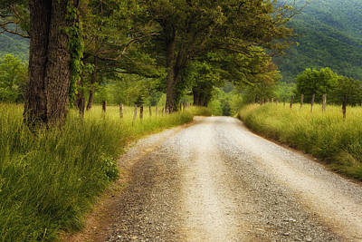 Solitude Photograph - Gravel Road In The Smokies by Andrew Soundarajan