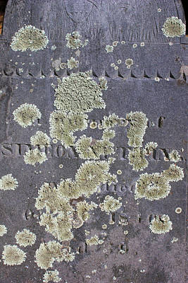Photograph - Gravestone With Lichen by Mary Bedy