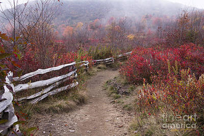 Photograph - Graveyard Fields 1 - Blue Ridge Parkway 2013 by Matthew Turlington